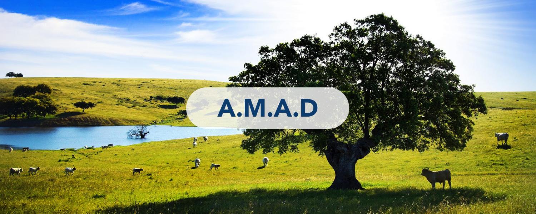 Nuestro Lema A.M.A.D.